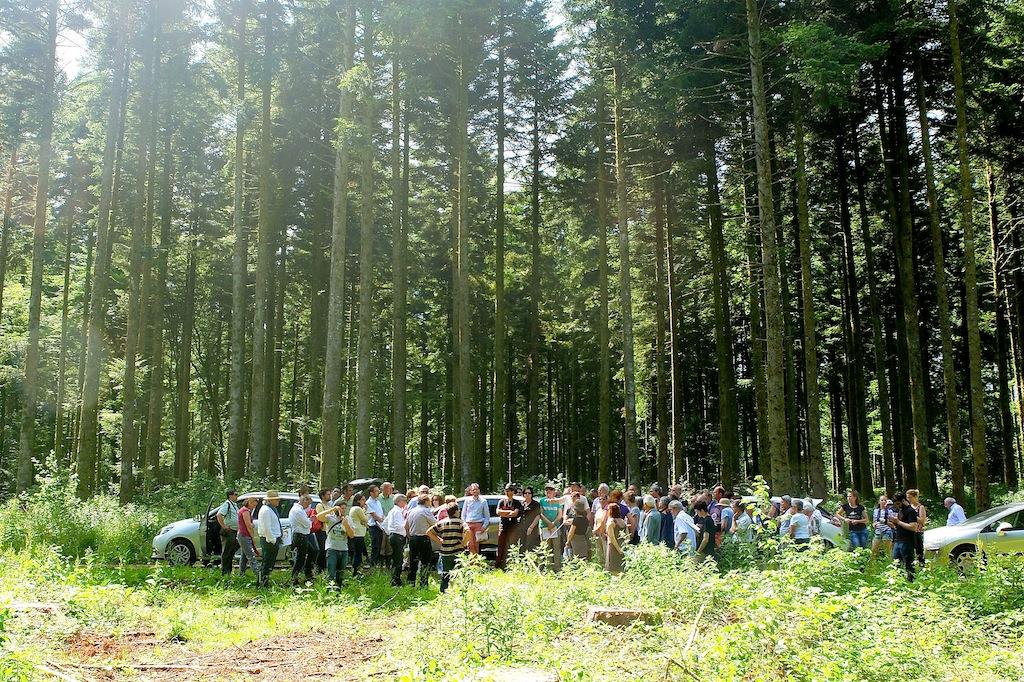Visite en forêt de Poligny, le 13 juin 2015, à l'occasion du débat public.