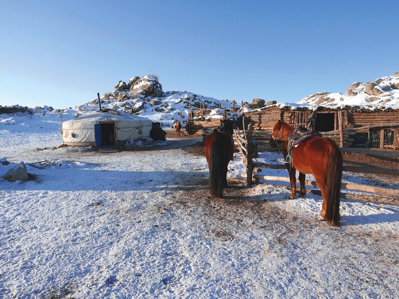mongolie2_cmarc_alaux