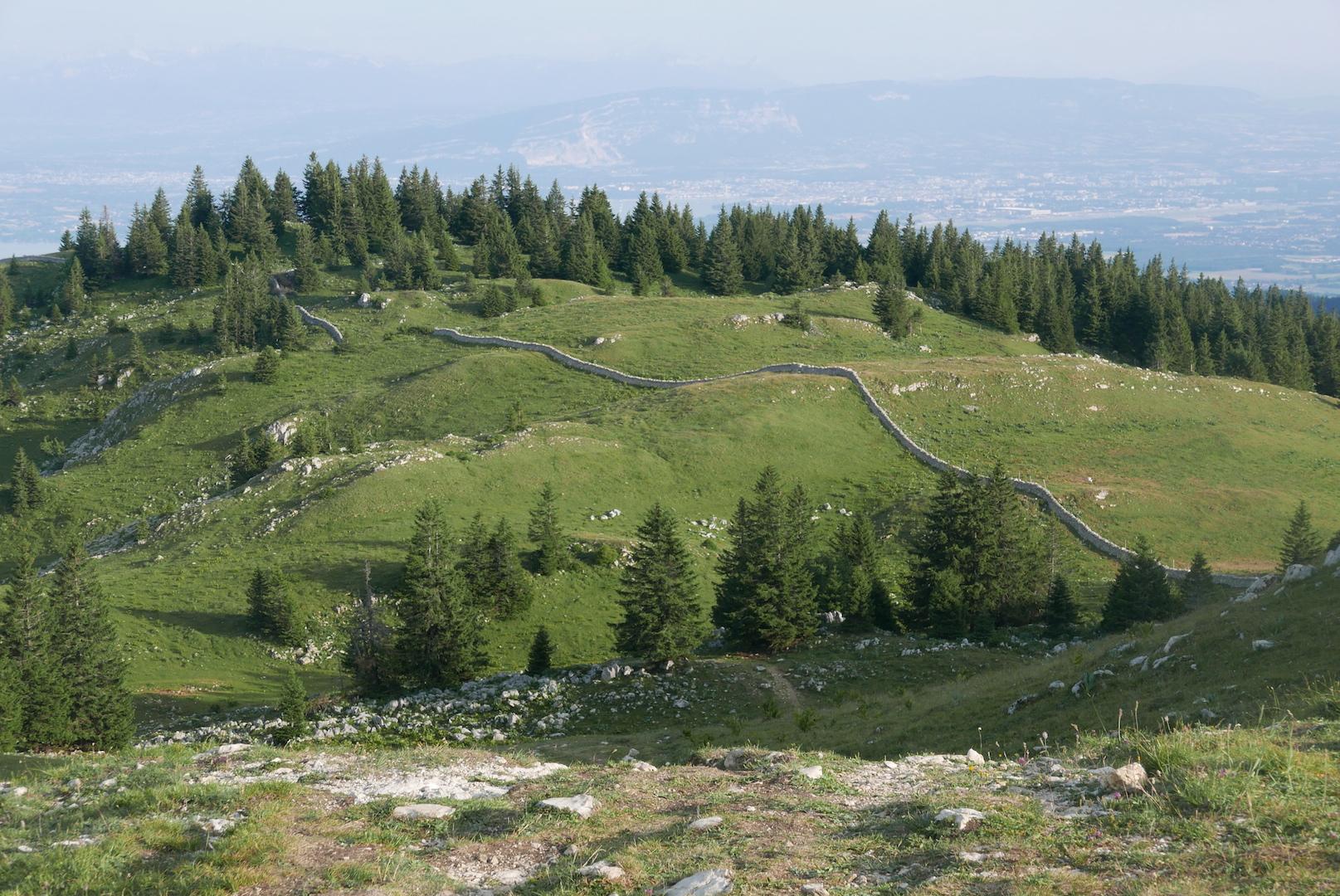En Suisse, comme ici sur les pentes de la Dole, à deux pas des Rousses et du Col de la Faucille, les affleurements rocheux, les haies et les murgers sont protégés. (Photo d'archives Daniel Bordur)
